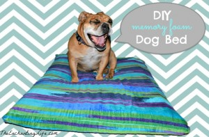 Quick and Easy DIY Dog Bed using memory foam. Dogs love it and it costs under $30!