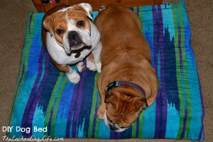 Easy DIY Memory Foam Dog Bed Tutorial on TheEnchantingLife.com